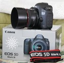 Canon EOS 5D Mark III с EF 24-105mm IS обектив €1000