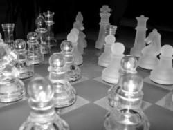 Веселин Топалов спечели титлата в шахматната Шампионска лига