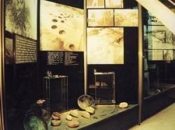 Аукцион на картини организират в Правец