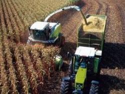Земеделските стопани от общината получиха евросубсидии