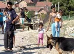 Програма за работа с ромското население подготви общината