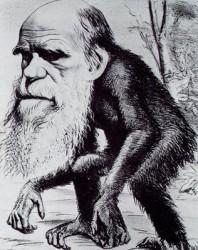 Чарлз Дарвин е откраднал идеята за еволюцията