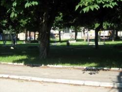 Поставиха нови люлки в градинката на Площад 20