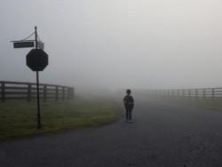 """Движението по магистрала """"Хемус"""" е затруднено заради гъста мъгла"""