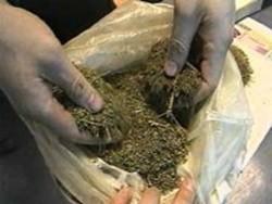 Полицаи иззеха 80 грама канабис от домовете на двама младежи от Литаково