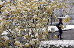 Температури от минус 12 до 21 градуса ни чакат през декември