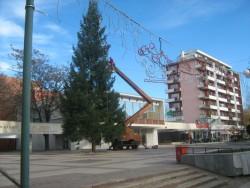 Светлините на коледната елха ще бъдат запалени в понеделник