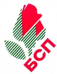 Трима от депутатите в Софийска област да се избират мажоритарно предлага БСП