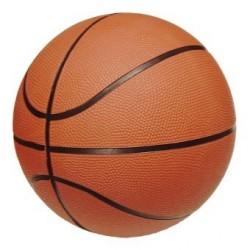 Ботевград - най-баскетболен град в България