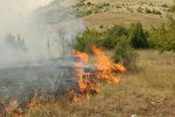 Борова гора се запали край Стара Загора