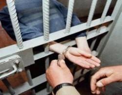 Пловдивски полицаи задържаха серийни крадци