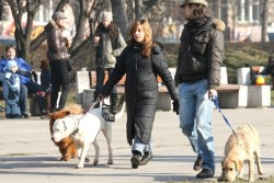 Температурни рекорди в Шумен и Разград