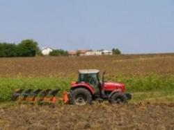 155 земеделски стопани са подали досега заявления за подпомагане