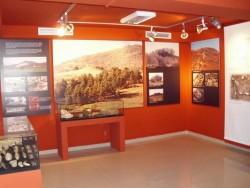 Исторически музей – Ботевград получи ценно дарение от сестрата  на проф. Вълков