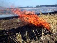 Министър Найденов обсъди борбата с пожарите с ръководството на Северозападното горско предприятие