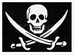 Пиратска партия влезе в парламента на Берлин