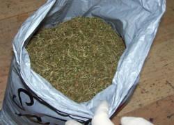 Спипаха престъпна група с 10 кг канабис