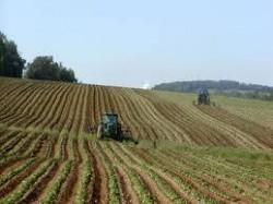 Разясняват кампанията за подпомагане на земеделците