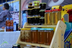 Започва новият прием по пчеларската програма