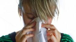 Новата 2013-та година идва с грип