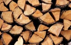 Криминалисти разследват кражба на четири кубика дърва за огрев