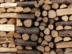 Разкриха кражбата на дърва за огрев от вила в Новачене