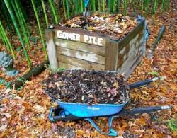 Общината организира извозването на градински отпадъци
