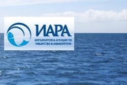 Агенцията по рибарство проверява рибностопански обекти и търговски обекти