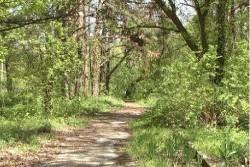 120 декара уникален парк загива