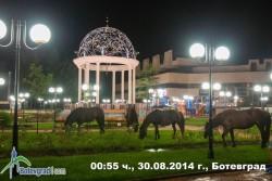Граждани сигнализираха за проблеми с уличното осветление