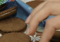 Жена намери живи червеи в бисквити