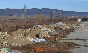 """Германец се разплака пред руините на """"Чавдар"""""""