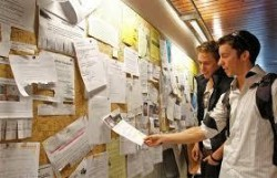 За вас, студенти: Възможност за работа в Германия