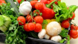 Оферти за доставка на хранителни продукти за общински социални и детски заведения се приемат до 8 февруари /включително/