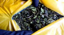 Заловиха дрога за близо милион лева на Летище София