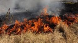 Предотвратяване възникването на пожари през пожароопасния период от 1-ви април до 31-ви октомври 2016г.