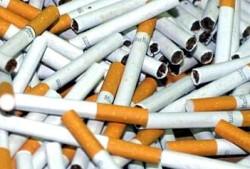 Повдигнато е обвинение на жителка на с. Врачеш за съхранение на 51 520 къса цигари без акцизен бандерол