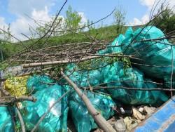 """990 човека от Община Ботевград са се включили в кампанията """"Да изчистим България заедно"""""""