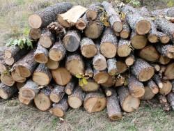 Незаконна дървесина открита в частен дом в Скравена
