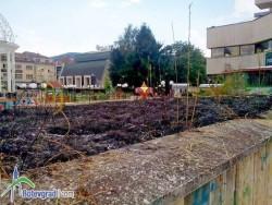 Деца подпалиха сухи треви до ротондата