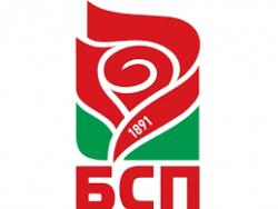 От 1 януари до 4 февруари местните БСП-организации ще номинират депутати