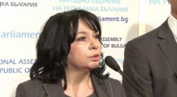 Теменужка Петкова: Трябва да защитим националния интерес за цената на природния газ