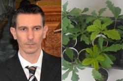 30 фиданки на т. нар. желязно дърво подари на Ботевград председателят на ОбС Божурище