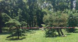 Откриха убита дъщеря на бивш депутат от ДПС в Украйна