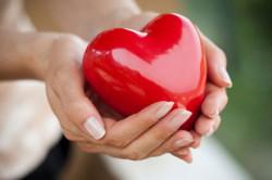 Безплатни консултации и прегледи на сърдечно-съдовата система се организират в Ботевград