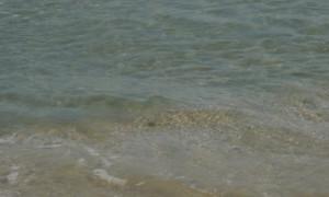 Проучване показа, че замърсяването с пластмаса в Черно море е сериозно