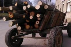 Дърва за огрев без марка и документи са установени в Скравена