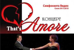 "Оркестър ""Симфониета"" - Видин гостува в Ботевград"