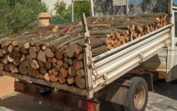 Камион с незаконно добита дървесина е иззет при полицейска операция в с. Радотина