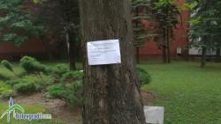 Третират тревните площи против кърлежи и комари